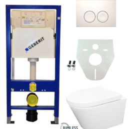 Wiesbaden Geberit UP 100 Vesta Rimless wc+zitt.+ Delta 21 wit