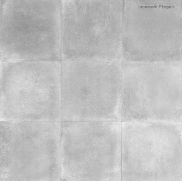 Limburg Gris 58,5x58,5 rett vloertegels / wandtegels